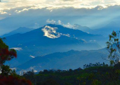 Above the Clouds Farm, Gualea, Ecuador